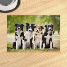Personalized Photo Gallery Pet Meal Mat Placemats